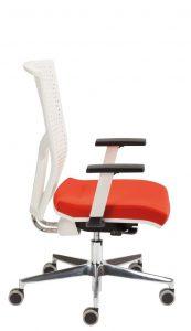 Kėdės biurui Omega